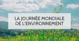 Take part in World Environment Day this Friday, June 5 !