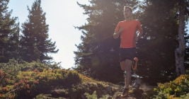 Top 5 : the best trail shoes to be back in September